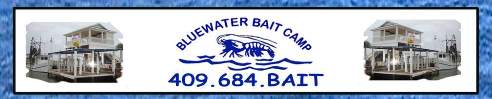 BluewaterBaitCamp