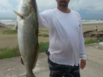 brad_beishir_28-half_inch_trout_caught-in-the-galveston-surf