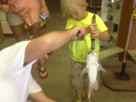 colt-hieber-weighing-in-fish