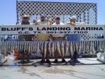 haws_bluffs_landing