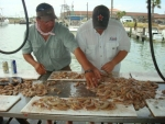 haws_traded_for_some_shrimp
