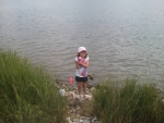 scarlettfishing