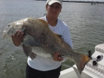 Yolie, Black Drum